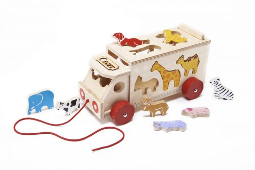 Wooden safari shape sorter